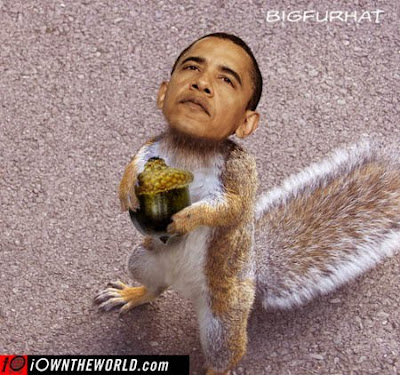 trained Obama squirrel